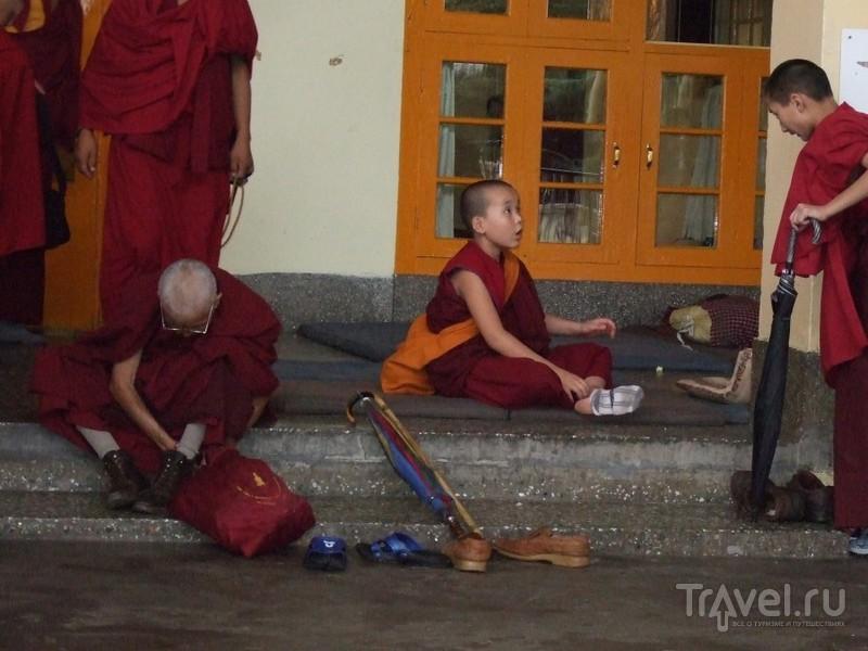 Дхармсала. Маленький Тибет / Индия