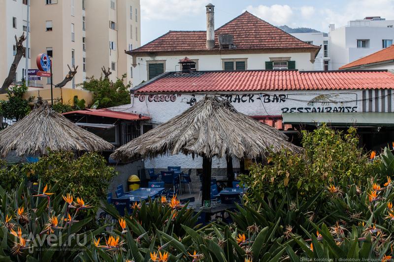 Путевые заметки: Машику, Мадейра / Португалия