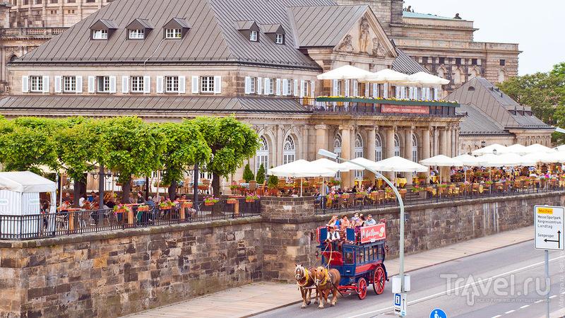 Германия. Дрезден. 2011 / Германия