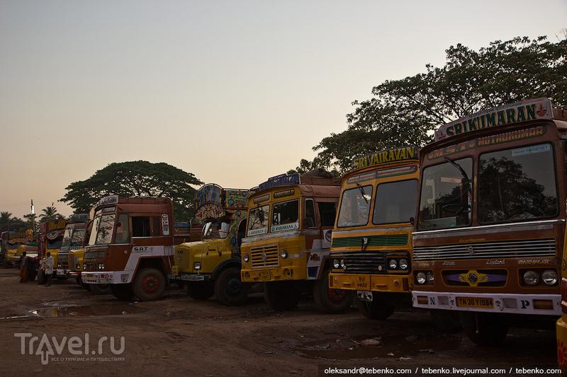 Индия. Керала. Часть 1. Первое знакомство / Индия
