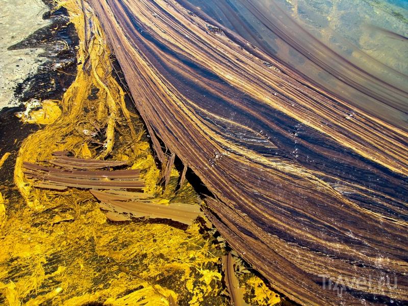 Смолистая поверхность битумного озера Пич-Лейк, Тринидад и Тобаго / Тринидад и Тобаго