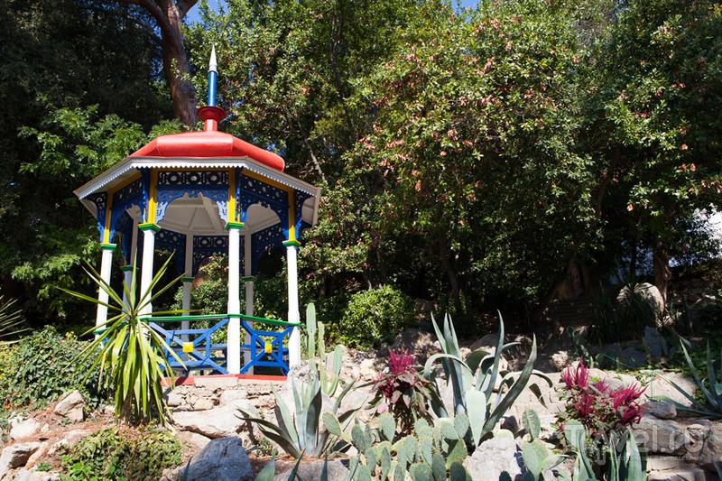 Крым. Никитский ботанический сад / Украина