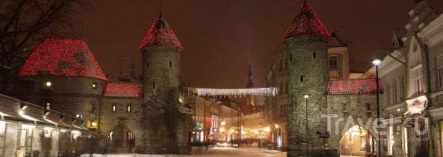 Таллин в Новогодние праздники / Эстония
