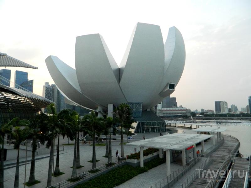 С Пхукета в Сингапур / Фото из Сингапура