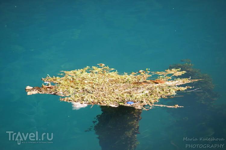 Голубое озеро / Абхазия
