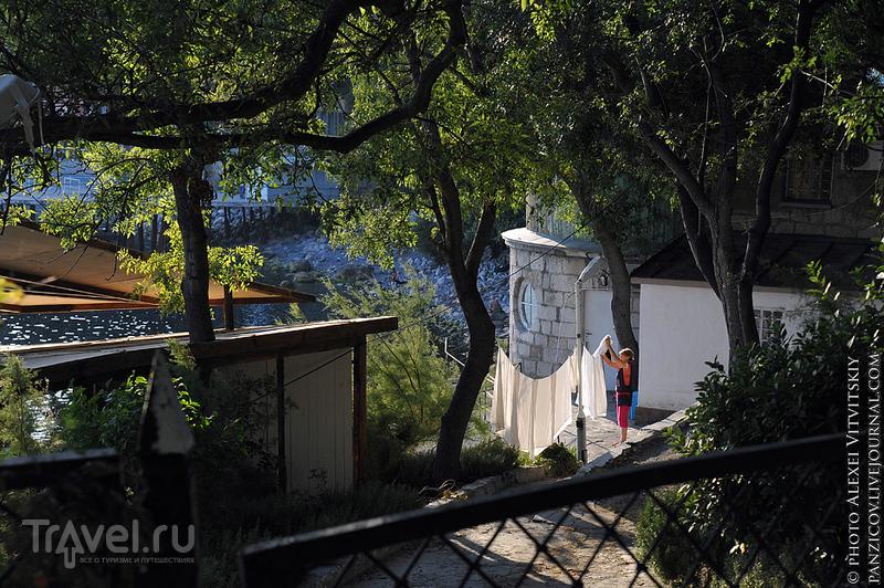 Алупка 2012 - любимое место в Крыму / Фото с Украины