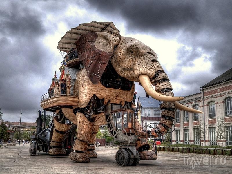 Механический слон был создан в 2007 году, Франция / Франция