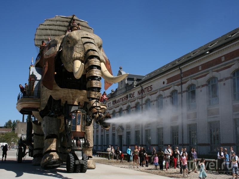 Механический слон периодический поливает прохожих водой из стального хобота, Нант / Франция