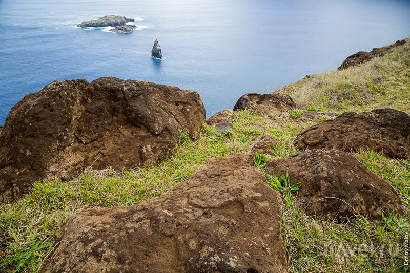 Петроглифы на острове Пасхи / Фото из Чили