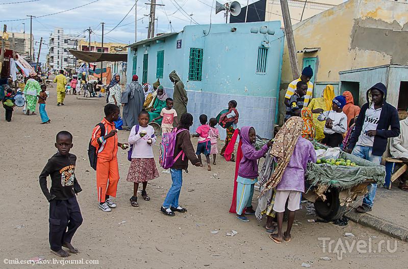 Сенегал. Орнитологический парк Джудж / Фото из Сенегала