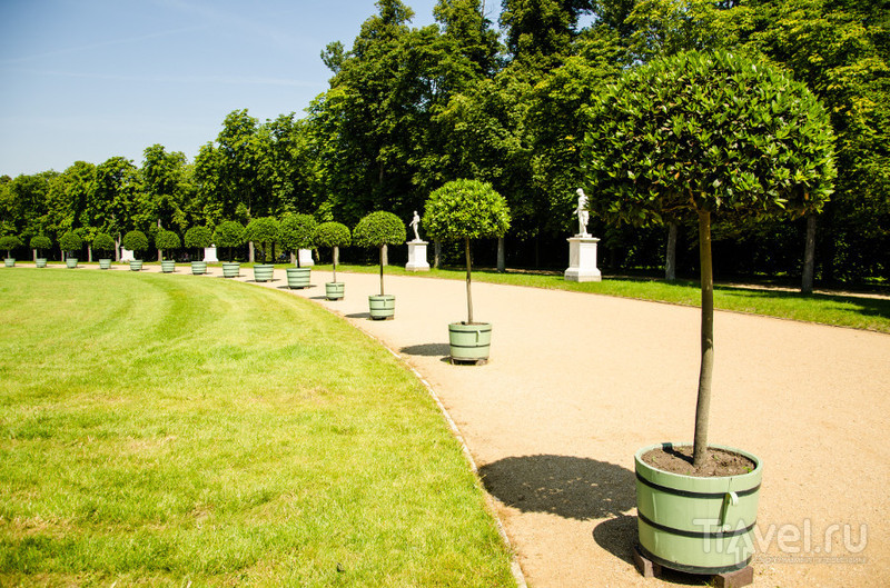 В парке Sanssouci в Потсдаме / Фото из Германии