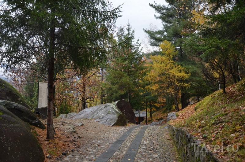 Дорога в парке Накуане / Фото из Италии