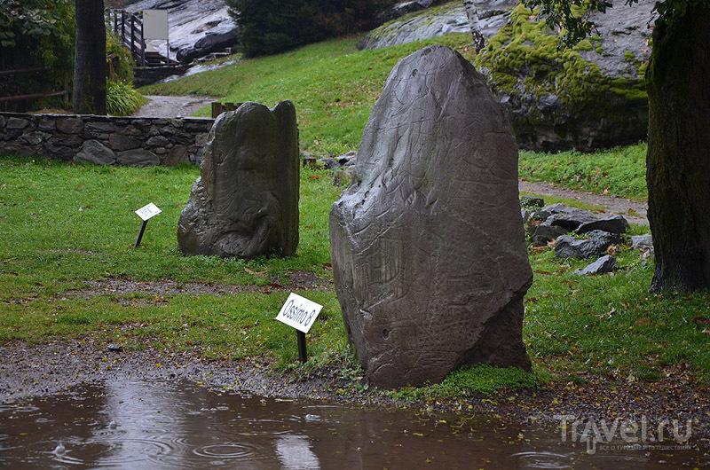 На камне - схематическое изображение мира / Фото из Италии