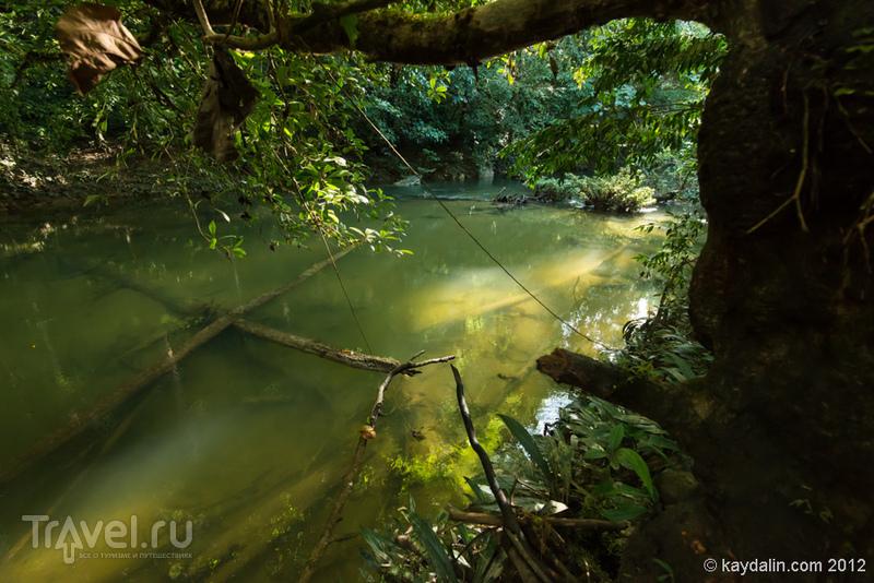Малайзия. Gunung Mulu National Park / Фото из Малайзии