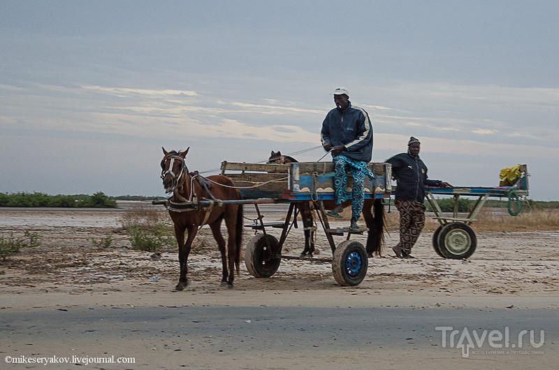 Деревня Мар-Лодж и cенегальская школа / Фото из Сенегала