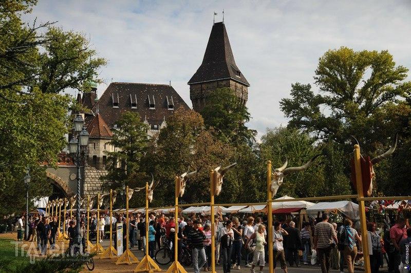 Праздник живота в Венгрии / Фото из Венгрии