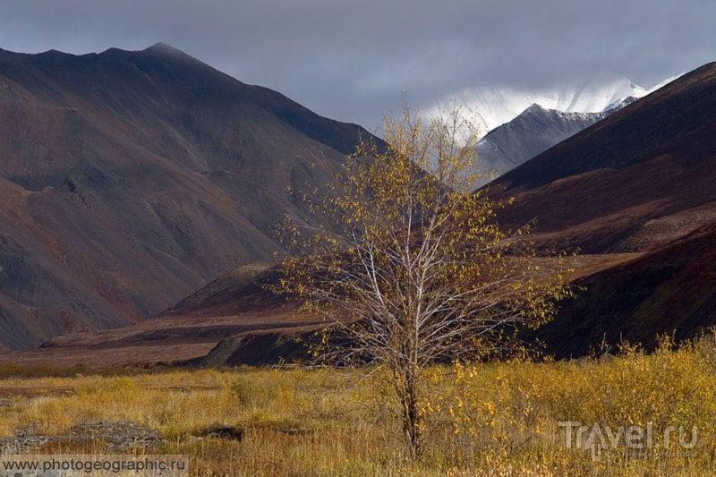 Якутия. Момские горы / Россия