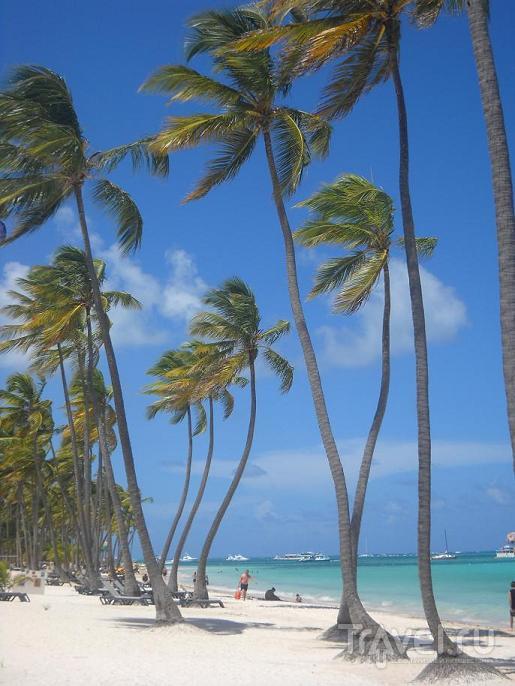 Отдых в Доминикане. Часть 1. Кошмар наяву... / Доминикана