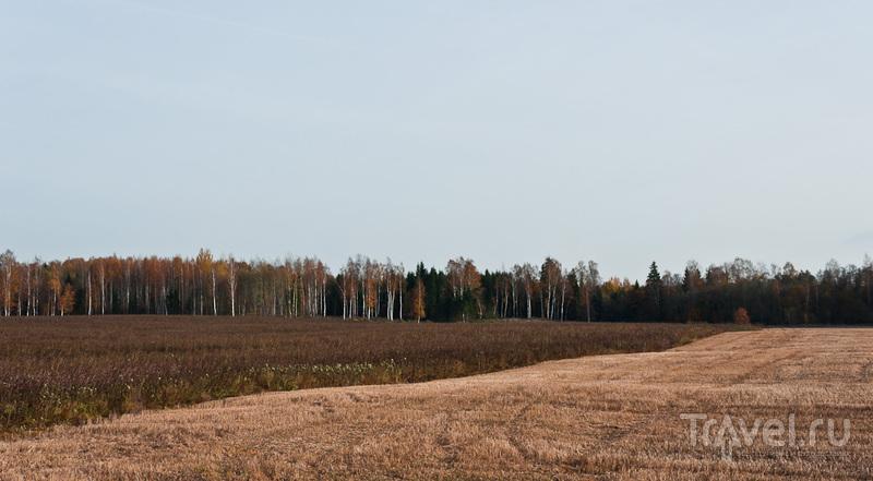 Даугавпилс - Гарсене, велопоездка / Латвия