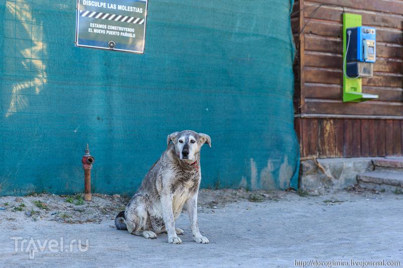 Барилоче и окрестности / Фото из Аргентины