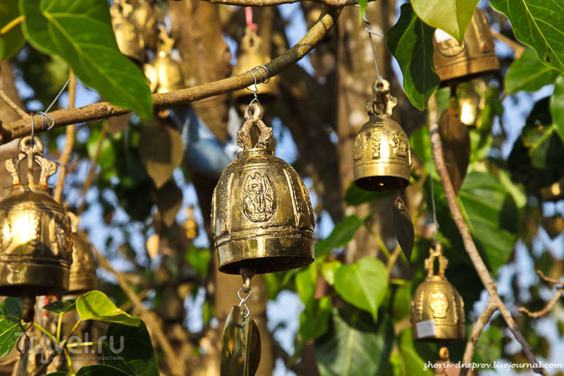 Страна улыбок 4. На квадрацикле по джунглям к Большому Будде / Таиланд