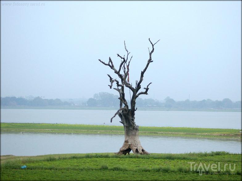 Тиковый мост У-Бейн / Мьянма