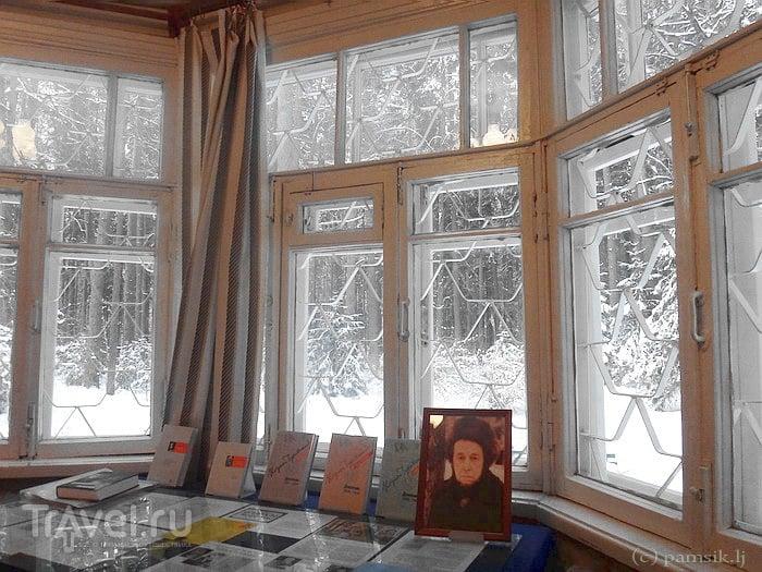 фото музей дом музей чуковского