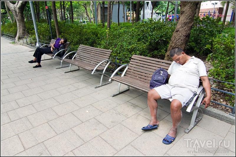 Гонконг. Городские парки / Фото из Гонконга