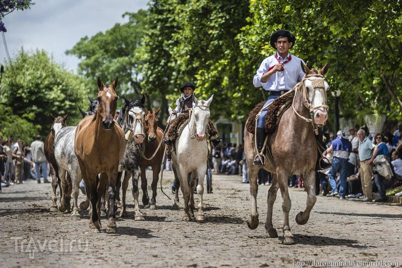 Фестиваль гаучо. День парадный / Аргентина