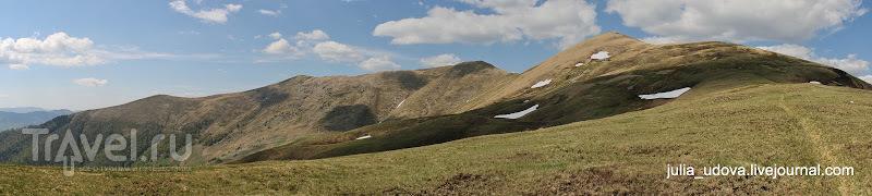 Украинские Карпаты в мае. Гора Негровец / Украина