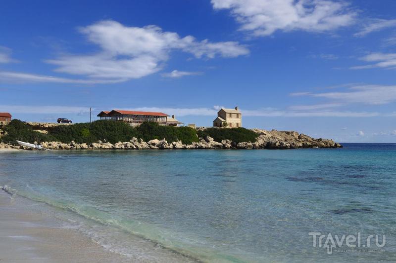 Полуостров Карпаз. Ослы и море / Кипр