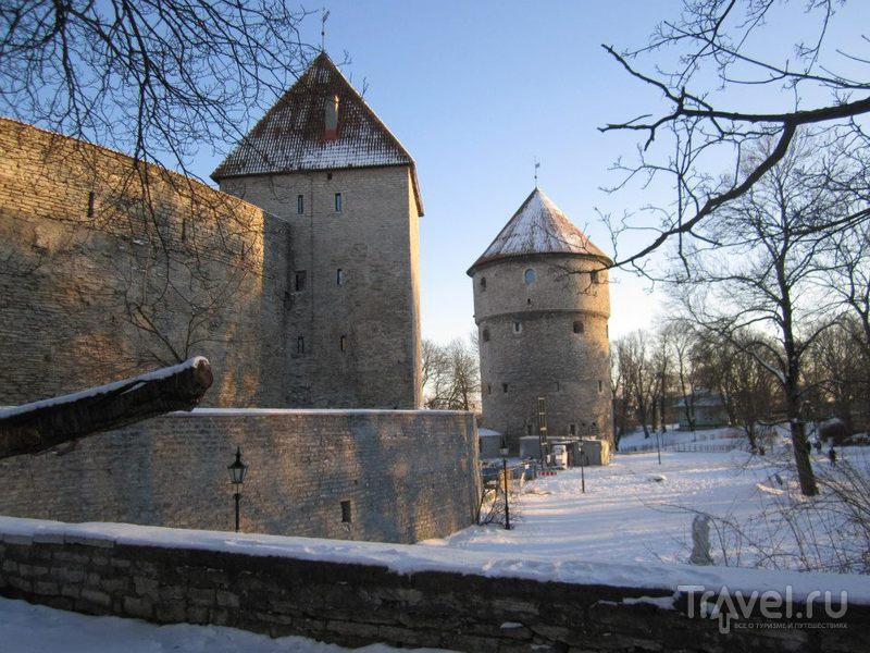 Башня Кик-ин-де-Кёк в Таллине / Фото из Эстонии