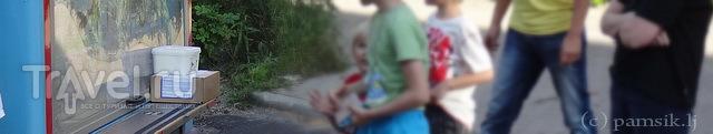 Волшебный колокольчик детства или финское мороженое / Финляндия