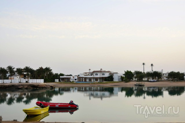 Отель Movenpick El Gouna. Swiss quality. Другой Египет / Египет