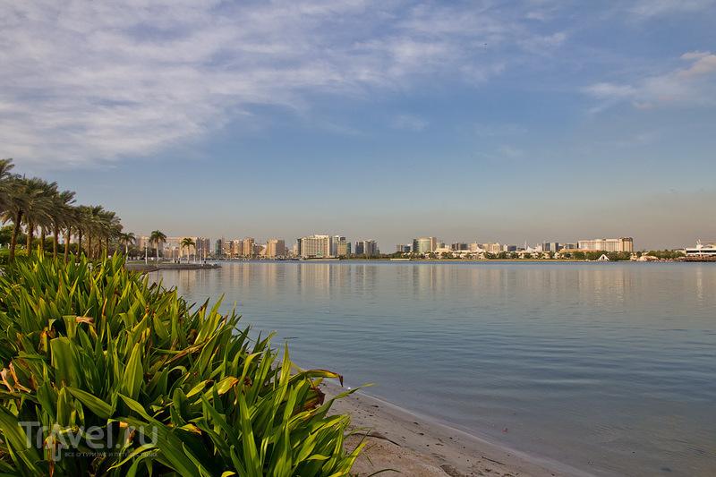 Creekside Park в Дубае и его обитатели / ОАЭ