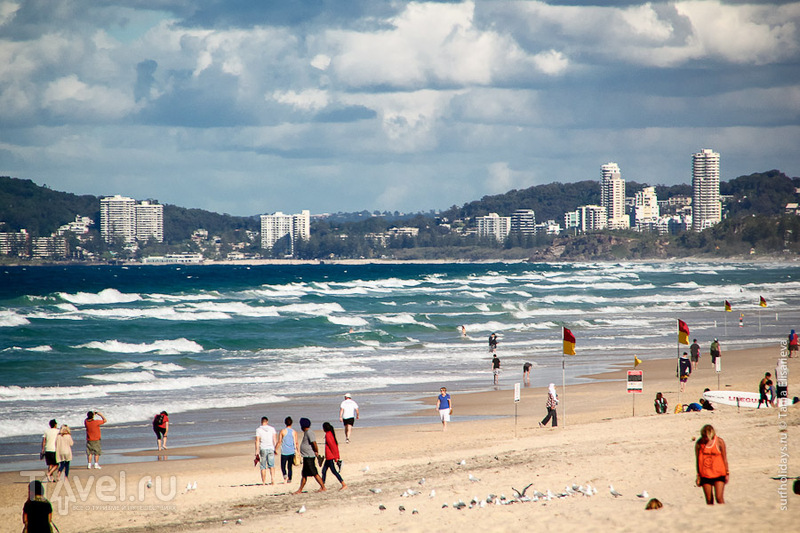 Пляж в Серферс-Парадайсе, Австралия / Фото из Австралии