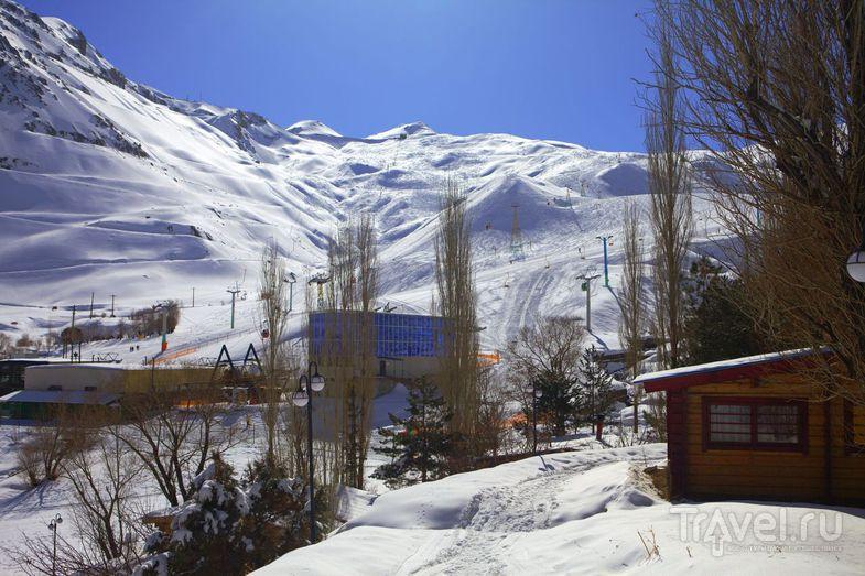 Горные лыжи в Дизине / Фото из Ирана