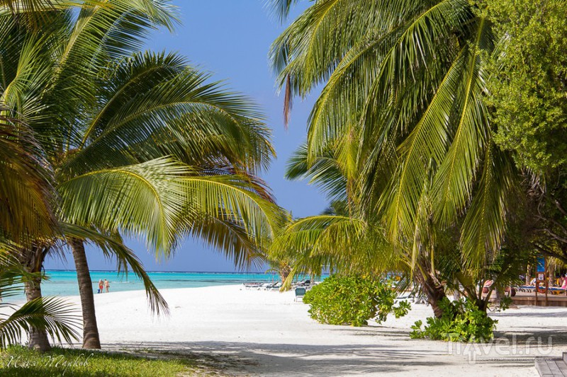 Мальдивы. Рай / Фото с Мальдив