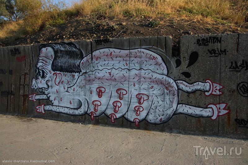 Крымские зарисовки: Морское, Ай-Фока, Чобан-Куле и бухты Нового Света. / Фото с Украины