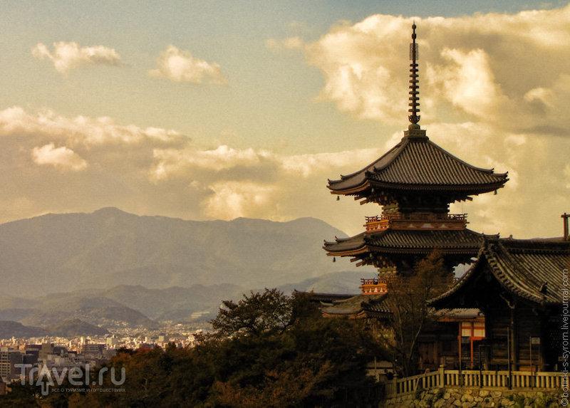 Дорога из красных ворот / Фото из Японии