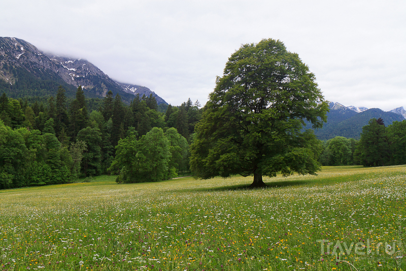 Из жизни баварских королей: замок Линдерхоф / Фото из Германии
