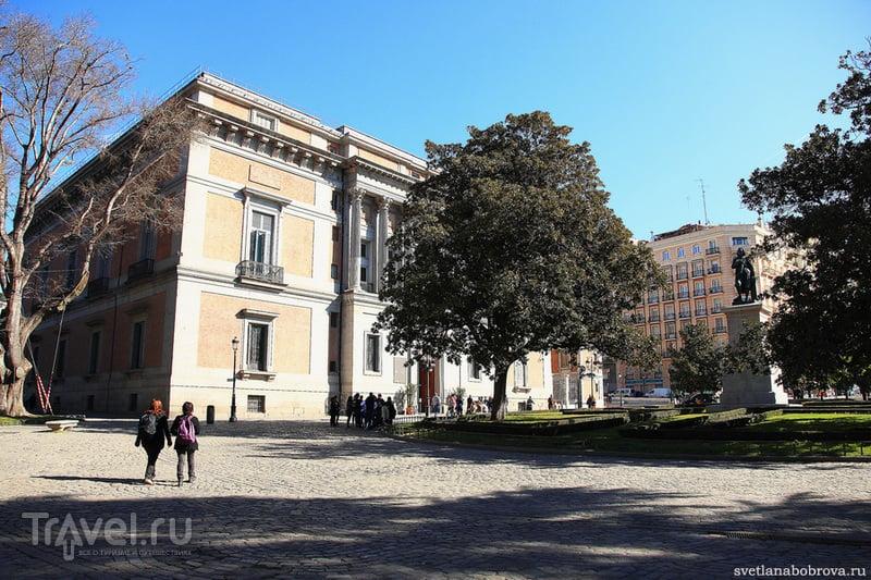 Музей Прадо в Мадриде / Фото из Испании