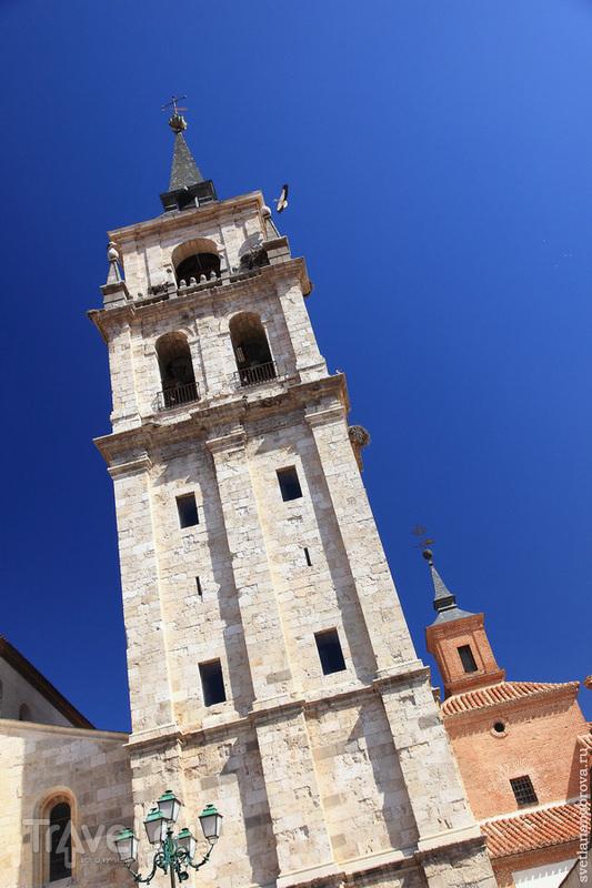 Колокольня Торре-де-Санта-Мария в Алькала-де-Энарес / Фото из Испании
