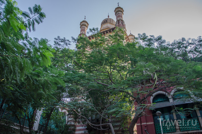 В городе Ченнаи, Индия / Фото из Индии