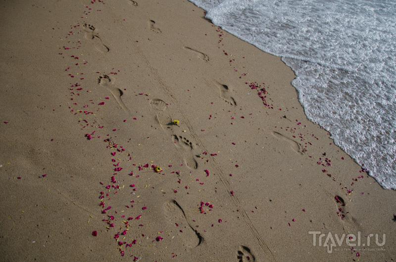 Ченнайский берег / Фото из Индии