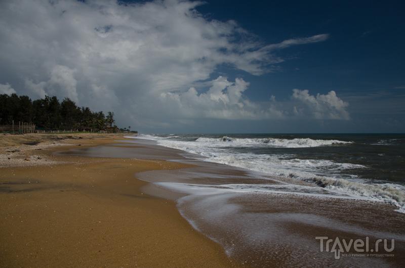 Берег Бенгальского залива / Фото из Индии