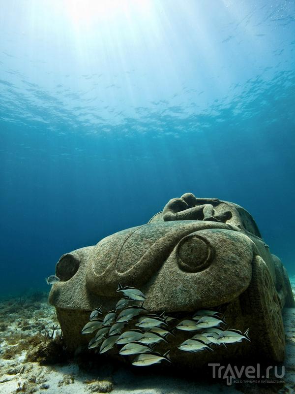 Проект Джейсона Тэйлора важен для баланса местной морской среды / Гренада