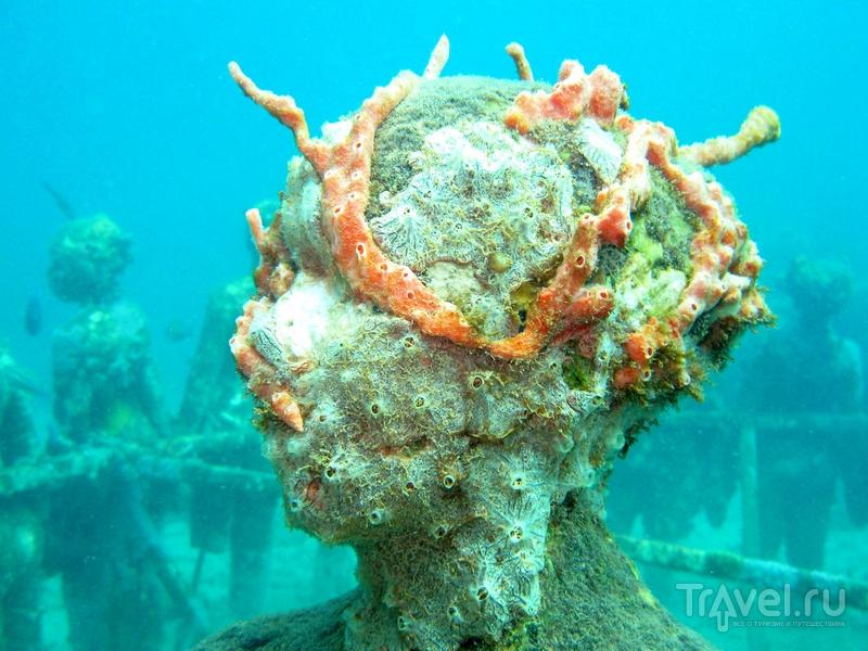 Первые скульптуры подводного парка были погружены на морское дно в 2006 году, Гренада / Гренада