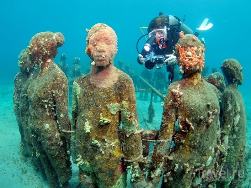 The Underwater Sculpture Park - уникальный музей, расположенный на дне Карибского моря / Гренада