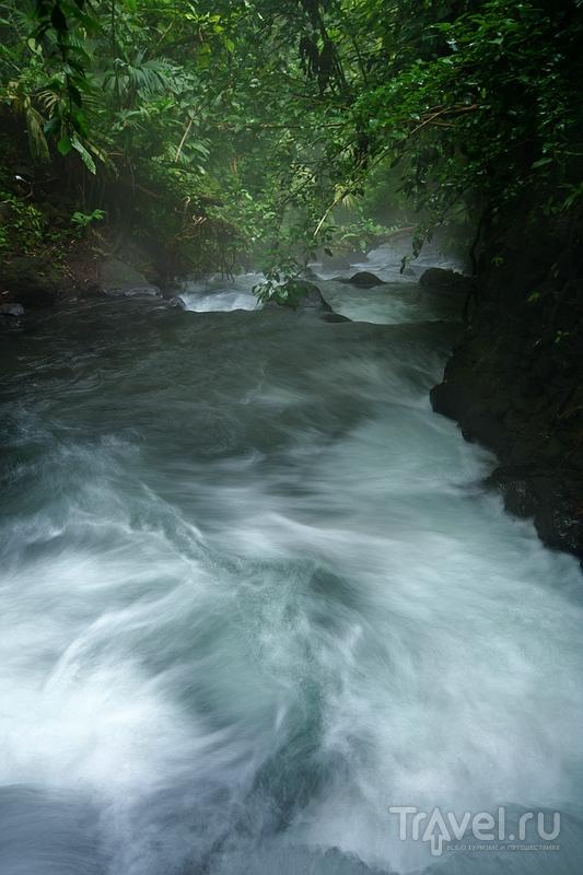 Путешествие по туманной Коста-Рике / Фото из Коста-Рики